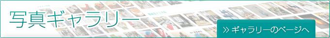 banner-salesio-photogallery
